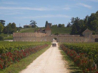 Chateau Grand Mayne, Saint Emilion, Bordeaux, France