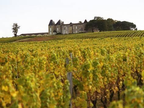 Chateau d'Yquem, Sauternes, Bordeaux, France
